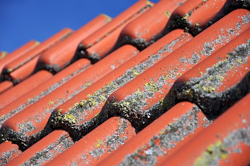 Nettoyage toiture 1001 travaux - Comment nettoyer sa toiture sans monter sur le toit ...